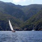 Croisière en Corse Août  En face de Scandola